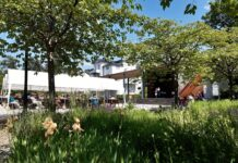 Kurpark Friedrichroda